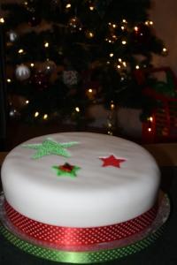 Christmas 2012 (14)